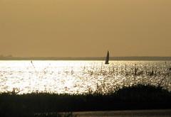 Lonely Boat (Sujit Mahapatra) Tags: usa art beach public sepia canon boat newjersey scenery nj lonely sandyhook blueribbonwinner instantfave platinumphoto aplusphoto sujitphotography 25may2008