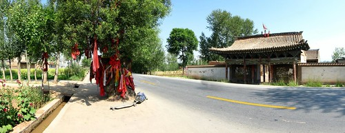 Old tree preserved in the middle of the road on China National Highway 109 east of Xining, Qinghai Province, China