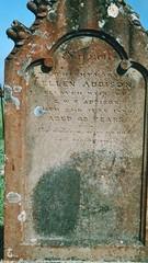 Ellen Campbell Addison gravestone Maitland