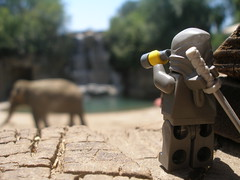Sighting #60 (scochrancpslo) Tags: california toys zoo lego ninja fresno legos stalker stealth elephants minifigs minifigures chaffeezoo legominifigs legominifigures