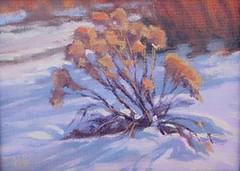 Winter Chamisa   6 x 8