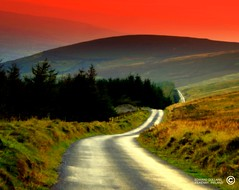 THE LONG AND WINDING ROAD. (Edward Dullard Photography. Kilkenny, Ireland.) Tags: kilkenny ireland landscape scenery dusk eire emeraldisle breathtaking thelongandwindingroad thebeatles smrgsbord carlow blueribbonwinner creativephoto  ukandireland perfectangle worldbest platinumphoto diamondclassphotographer onlythebestare edwarddullard theperfectphotographer