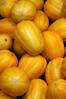 Cucumis melo var. makuwa (Eric Hunt.) Tags: nyc newyorkcity food newyork fruit manhattan vegetable cucurbitaceae koreanmelon cucumismelo cucumismelovarmakuwa