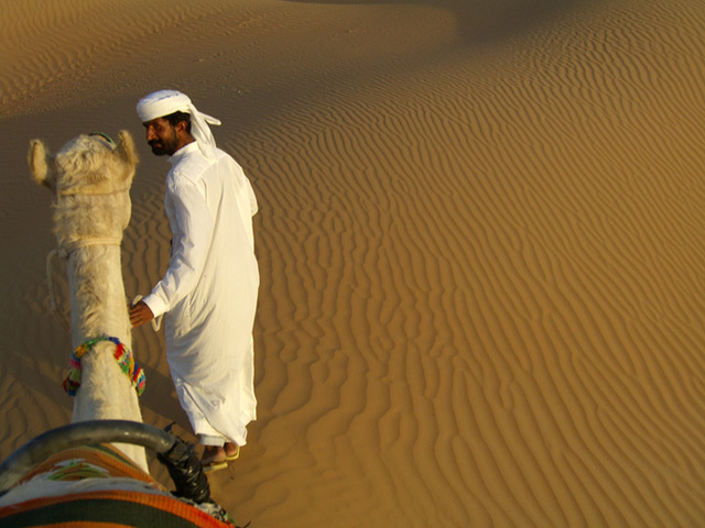 dan_renzi_camel_ride