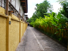 Villa De Daun 出口