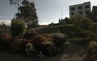 Cotacachi-real-estate-for-sale