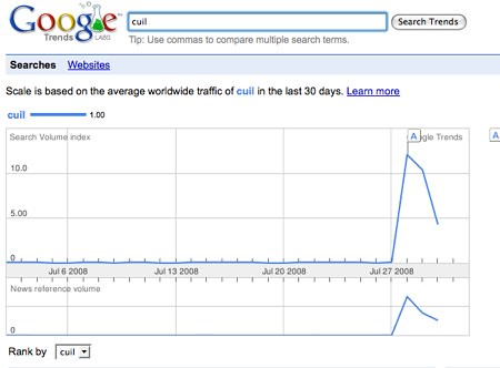 Google Trends: cuil