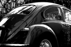 Beatle 1 (leondomi) Tags: vw beatle kfer
