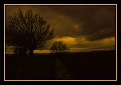 Ocaso  (Arribes del Duero) (CaRmEn C) Tags: atardecer rboles cielo nubes ocaso carmenc arribesdelduero