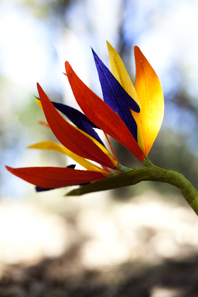 handcrafted paper flower: bird of paradise