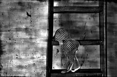 Tutto questo Silenzio (FotoRita [Allstar maniac]) Tags: life wood bw italy white black rome roma muro wall digital canon objects scala myfavourites canoneos350d eos350d righe legno sigma1020mm reggiseno byfotorita 123bw abigfave artlibre tuttoquestosilenzio