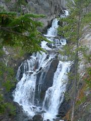 Yellowstone Ntl. Park (G.L.Carter) Tags: yellowstone wyoming grandteton