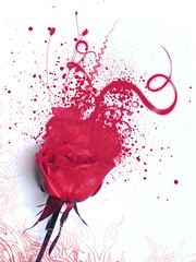 Explosion of the rose... (meesta meesta) Tags: red art nature rose ink paint organics expression painted explosion spray bleeding cliche imagery