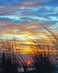 Beach at Sunrise: Ocean City, NJ (eastcoaster48) Tags: ocean sea sky film beach nature water clouds sunrise 35mm landscape newjersey shore jersey platinumphoto superbmasterpiece diamondclassphotographer platinumheartaward incrediblebackground
