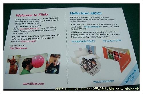 Moo Minicards002