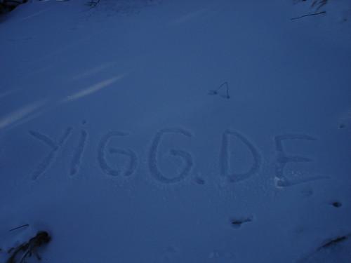 YiGG im Schnee