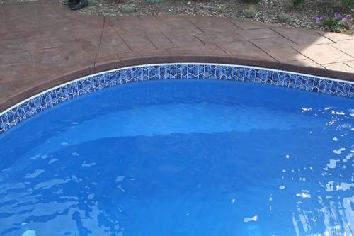 Signature Pools Chicago-Leisure Pools - Tuscany- in ground fiberglass pools Aurora, Illinois