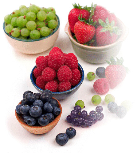 Eat your berries, they are important for antioxidants!