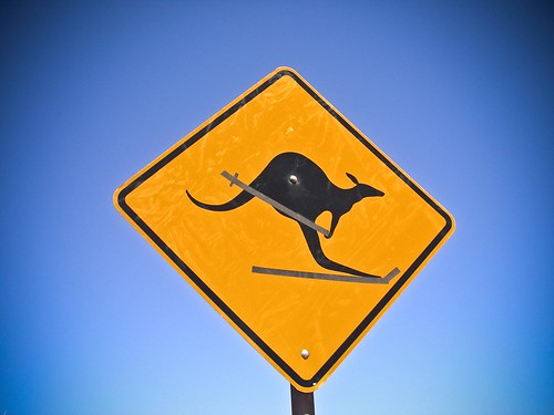 Warning- Skiing Kangaroos! by NeilsPhotography