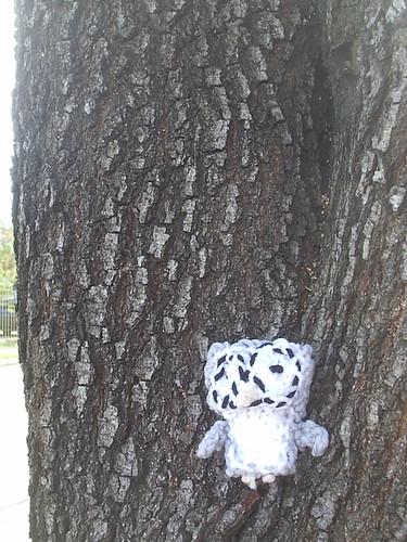 owltree