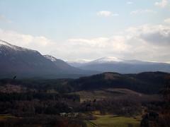 landscape4big (CrowPath) Tags: trees snow mountains bird clouds forest river landscape scotland highlands scottish highland aviemore birdofprey strathspey grampian badenoch kinrara