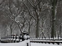 Snow Day #25 (Keith Michael NYC (2 Million+ Views)) Tags: centralpark manhattan newyorkcity newyork ny nyc