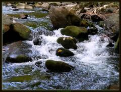 Cool Waters (Domesticated Diva) Tags: autumn water moss rocks tennessee rapids explore 2007 smokeymountains naturesfinest earthnature eow awesomephoto mywinners galinburg platinumphoto anawesomeshot diamondclassphotographer flickrdiamond citrit everydayissunday