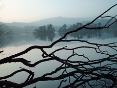 Lake District (Jhenley8) Tags: wood mist lake branches