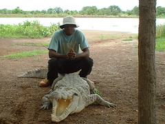 Marre Caimans Sacré de Sabou - Tourisme Burkina