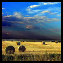 Blue and Gold (ecstaticist) Tags: blue light sky cloud canada field gold bravo ray quality alberta hay bale themoulinrouge infinestyle goldenphotographer