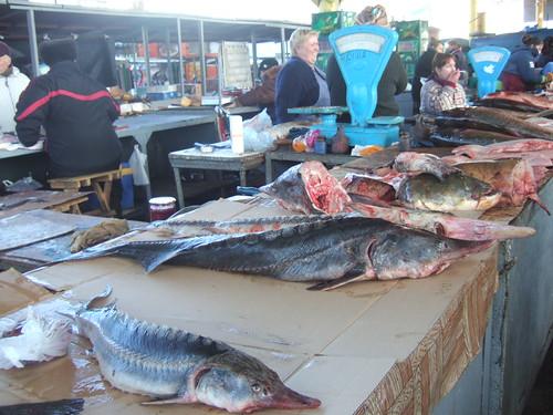 Fish at Privoz Market, Odessa