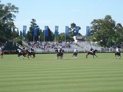 Polo Argentina - Abierto de Hurlingham - 16