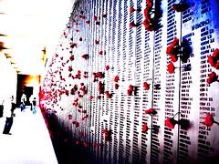 Cold Walls of Brave Hearts - Canberra/Aus (pensamentosdecorrentes) Tags: flores memorial australia poppy poppies canberra heroes camberra heris bookthief ameninaqueroubavalivros