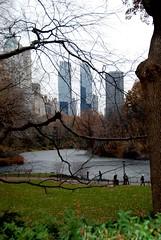DSC_0055 (mrittenhouse) Tags: city nyc winter newyork color centralpark icerink colorsoflife