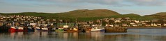 Campbeltown Harbour (howbeg) Tags: sunlight island scotland argyll ixus campbeltown davaar goldstaraward
