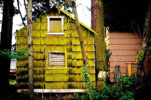 Green Shed - a small building next to Salem Ditch in Stayton Oregon