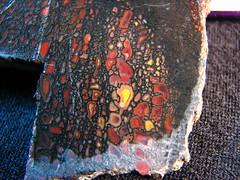 IMG_1193 (matthannon) Tags: agatized fossil dinosaur bone gembone jessbutler