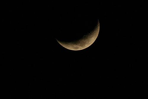Die Lange Nacht der Museen steht wieder an ©florianmeyer/flickr.com