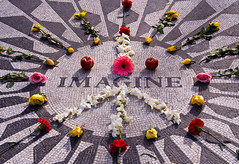 Imagine (Roberto_Ventre) Tags: park nyc flowers winter red roses people urban music ny newyork macro apple yellow america memorial peace centralpark central shapes midtown imagine beatles blocks block lennon 2008 johnlennon flowersplants gardenofpeace ilovenewyork strawberryfield strawberryfieldforever