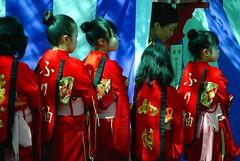 Kamuro of Tayuu (maiko.gallery) Tags: japan kyoto maiko geiko geisha yoshiwara oiran courtesans kamuro 太夫 osode joushoujitemple yoshinotayu usugumo