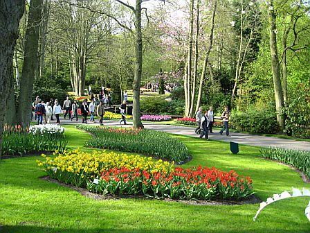 Keukenhof, Holland Pics - Europe 2008