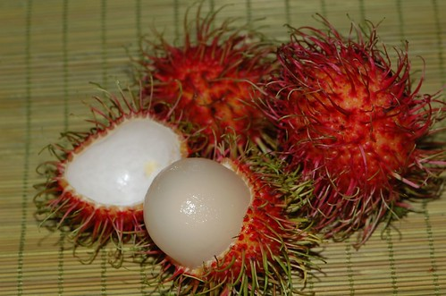 Hairy Red Fruit 9
