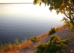 up the hill (Per Ola Wiberg ~ powi) Tags: summer vacation water sweden july sverige juli gotland 2008 shiningstar semester sommar stersjn blse supershot flickrsun exemplaryshotsflickrsbest naturewatcher landscapesdreams qualitypixels