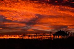 LeClaire Sunset (Jan Crites) Tags: iowa leclaire nature river mississippiriver lockanddam14 landscape sunset jancritesphotography february