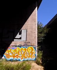 dzyer (petalum) Tags: graffiti dzyer