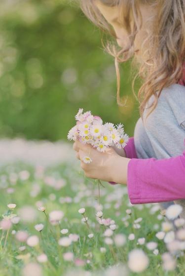 Kópia – kvet (4)
