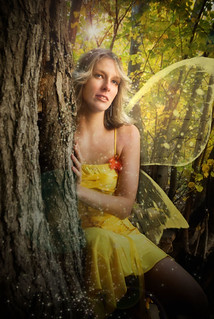 the fairy of autumn