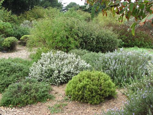 The Trial Garden At Pepiniere Filippi Www Jardin Sec Com Meze