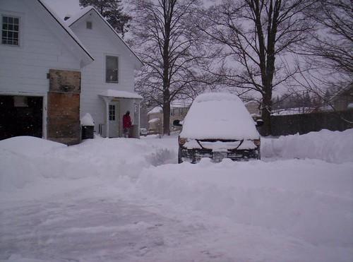 Loads o' Snow