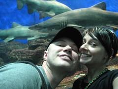Under the sea with Daniel and Kristin (cyborgelph) Tags: shark singapore daniel kristin sentosa underwaterworld